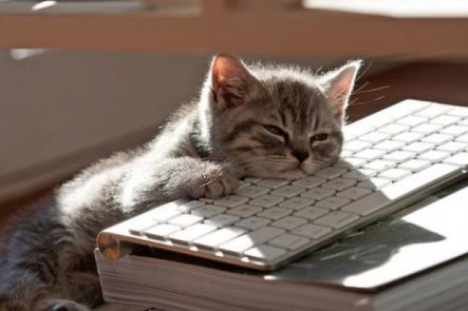 Sam's Blog Classic: SO MUCH WRITING!